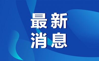 全球首例!香港确诊狗感染新冠病毒