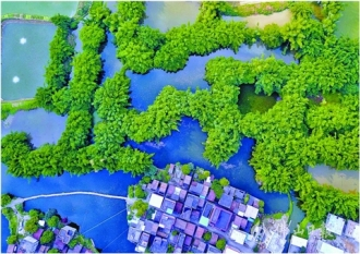 綠水青山和諧家園