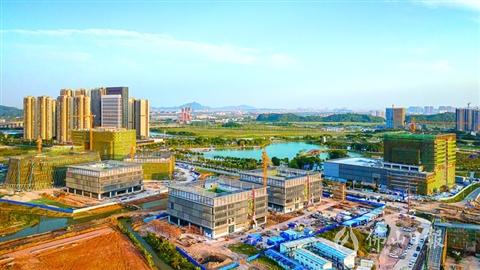 一批創新平臺及科研院所進駐 三龍灣人才磁聚效應凸顯