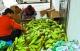 禪城區司法局指導蓬山村工作隊探索扶貧新路徑