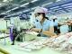 朱伟到高明区调研企业生产经营情况  助力企业转型升级