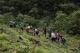 華南農業大學與墨脫縣合作 促茶產業高質量發展