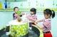 禅城145家幼儿园首批幼儿返园,在园期间不需戴口罩