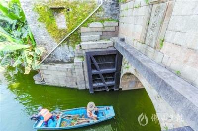 桑園圍:守衛珠三角的宏大水利工程