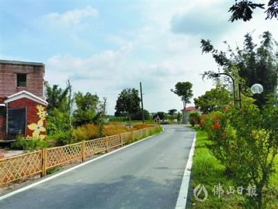 三水区乐平镇禾安村:从无名小村到文旅旺地的逆袭