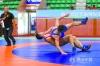 50万人次关注直播 广东省青少年摔跤锦标赛在佛山举行
