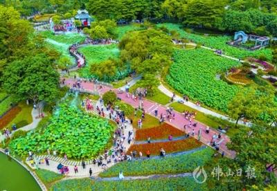 遇见美丽禅城绿