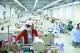 工信部公示第五批綠色制造名單  高明兩家企業上榜