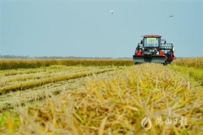 全球首個超萬畝無人化農場來了  碧桂園叩響智慧農業大門