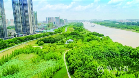 """走進""""王借崗-綠島湖""""千畝公園  盡享高顏值生態美景"""