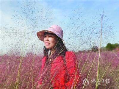 三水散文家邓翠群:人生那笔法 描红或留白