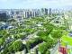 粤港澳大湾区建设新气象走笔 大交通、大开放、大格局