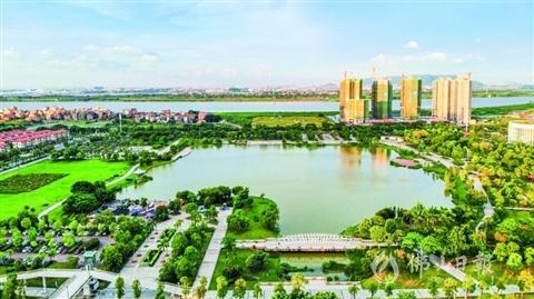 赏高明河湖 品生态之美